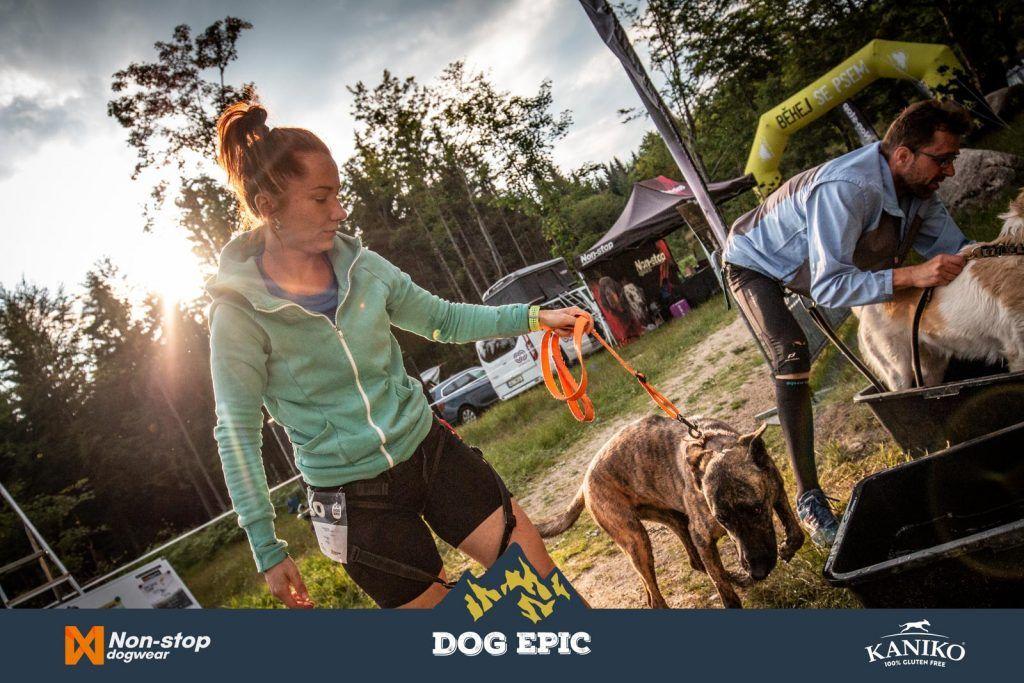 3528_dog_epic_0618