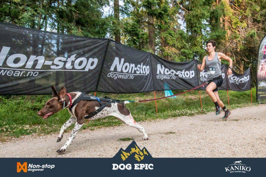 3593_dog_epic_0618