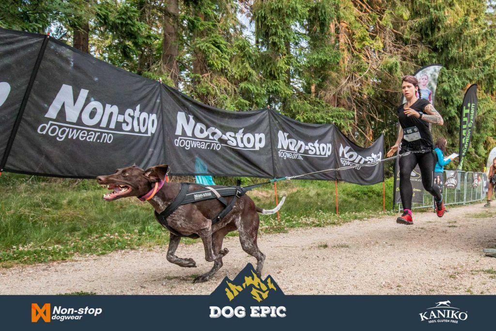 3599_dog_epic_0618