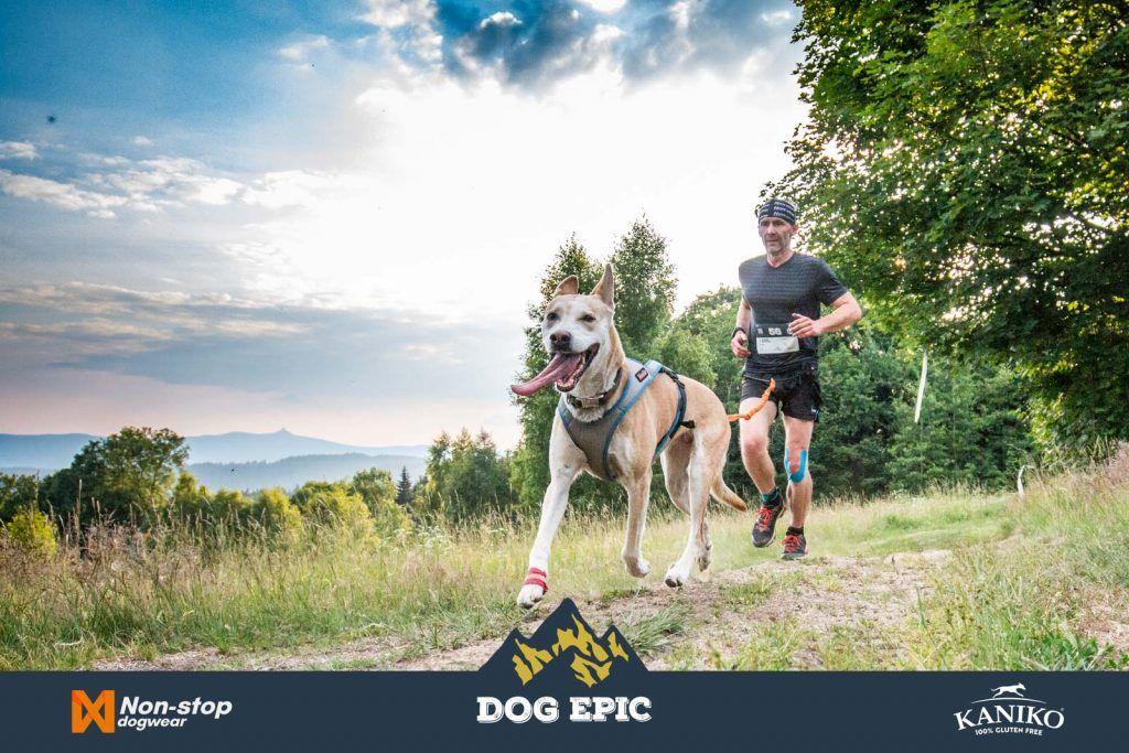 3646_dog_epic_0618