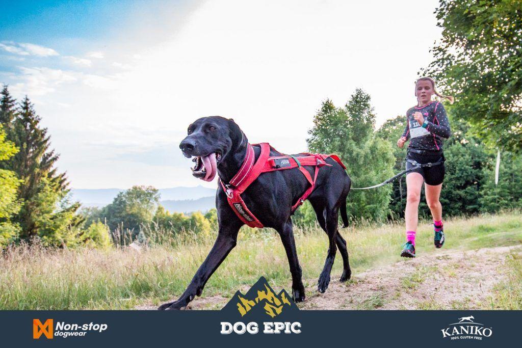 3655_dog_epic_0618