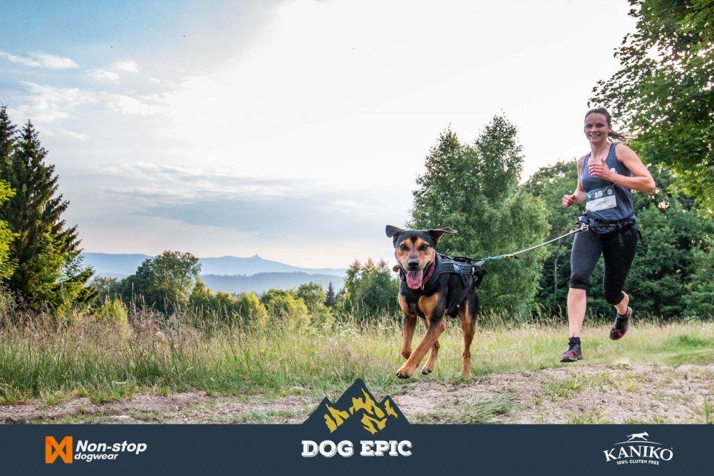3660_dog_epic_0618