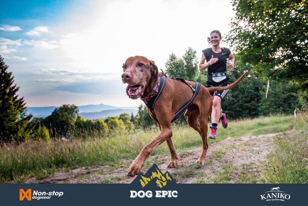 3673_dog_epic_0618