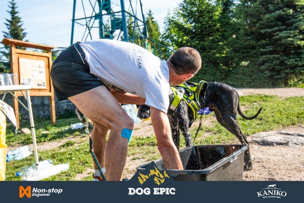 3893_dog_epic_0618