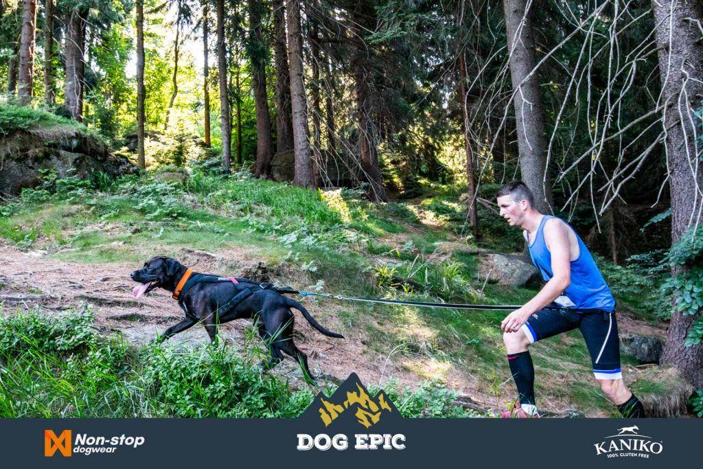3934_dog_epic_0618