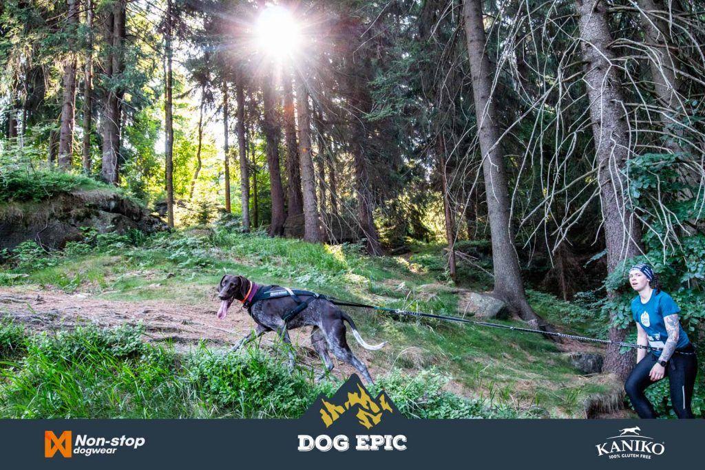 3948_dog_epic_0618