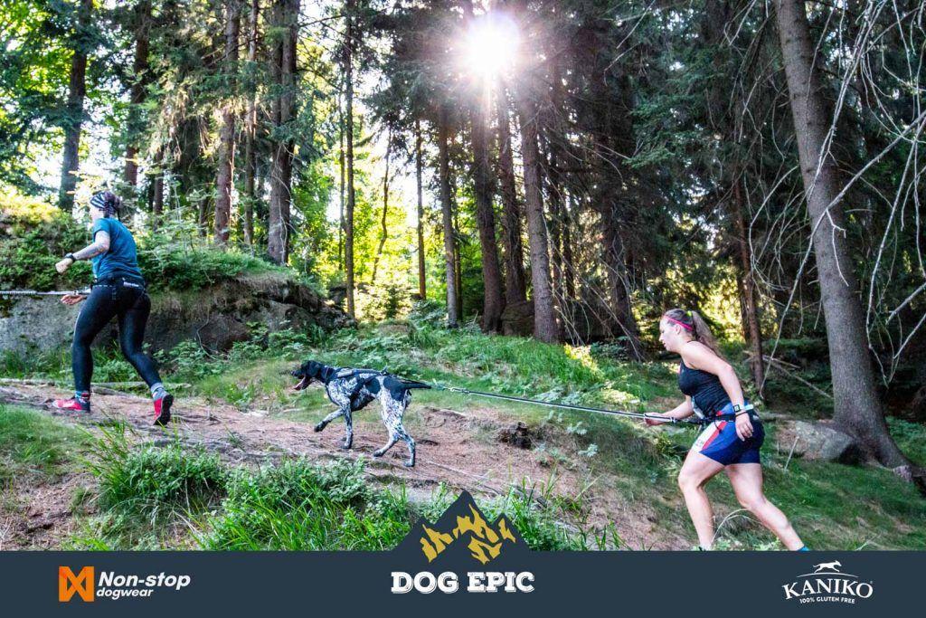 3959_dog_epic_0618