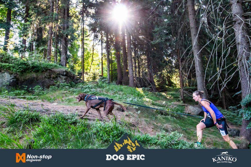 3967_dog_epic_0618
