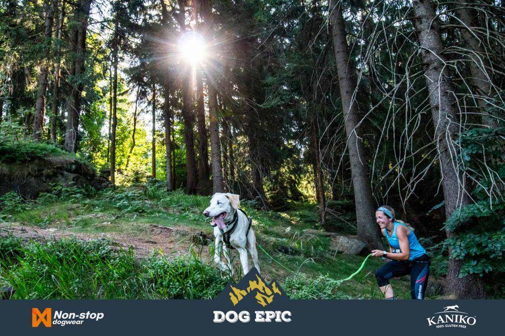 3978_dog_epic_0618