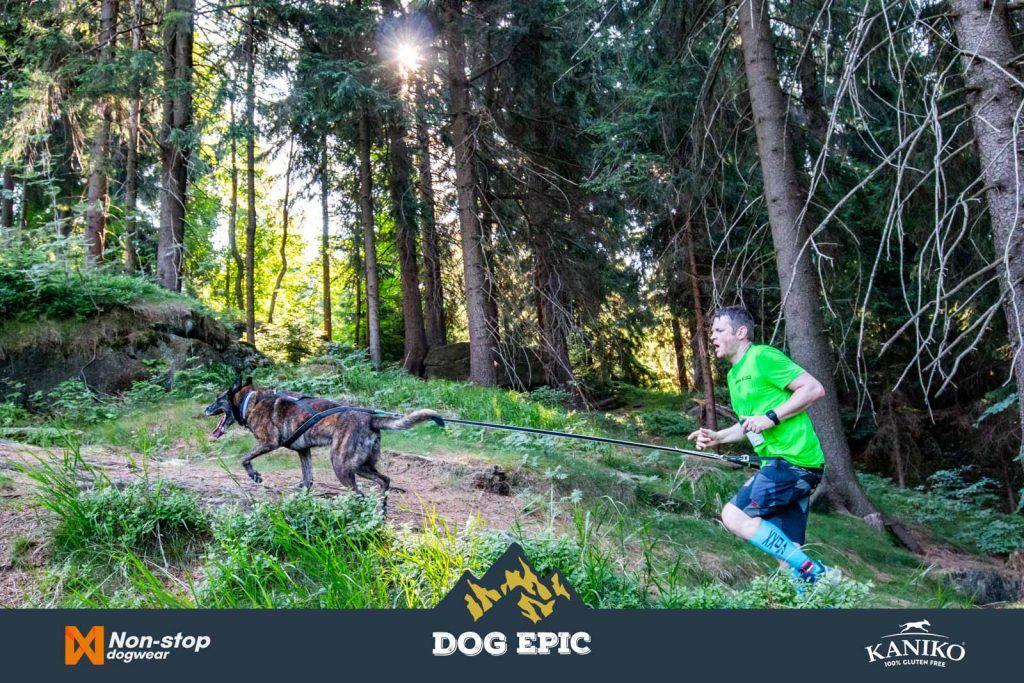 3998_dog_epic_0618