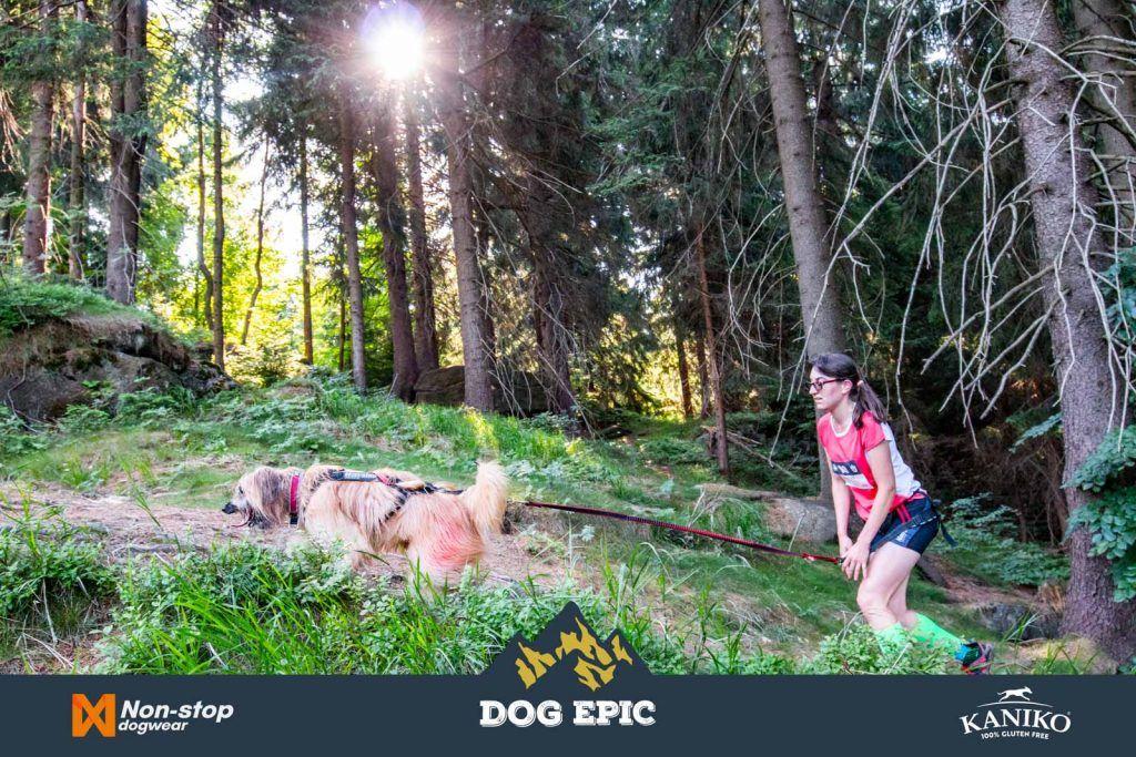 4009_dog_epic_0618