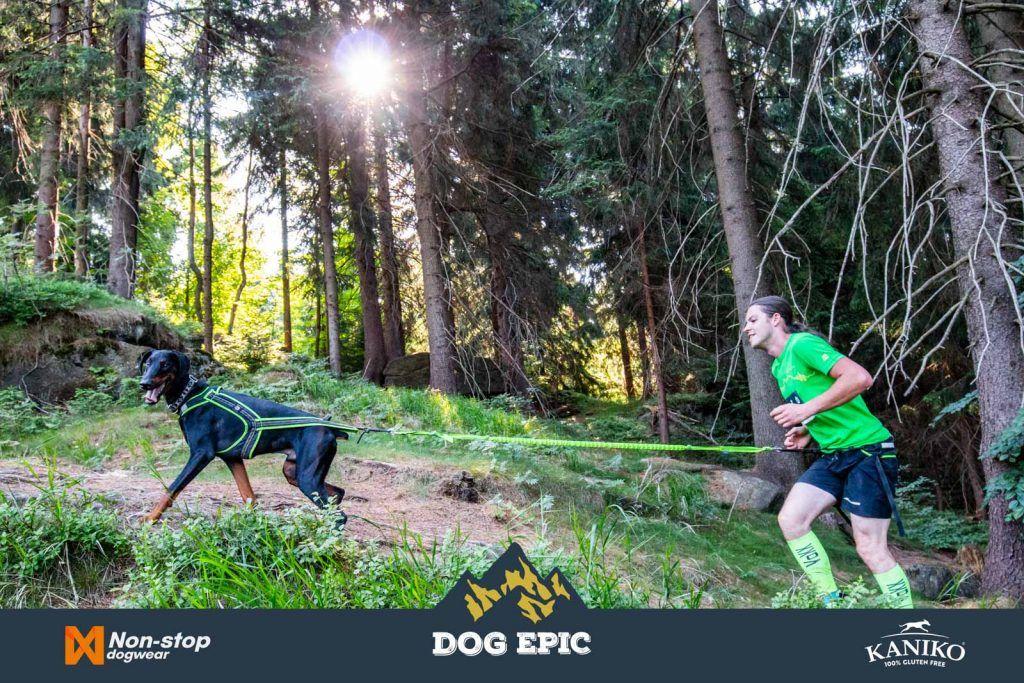 4016_dog_epic_0618