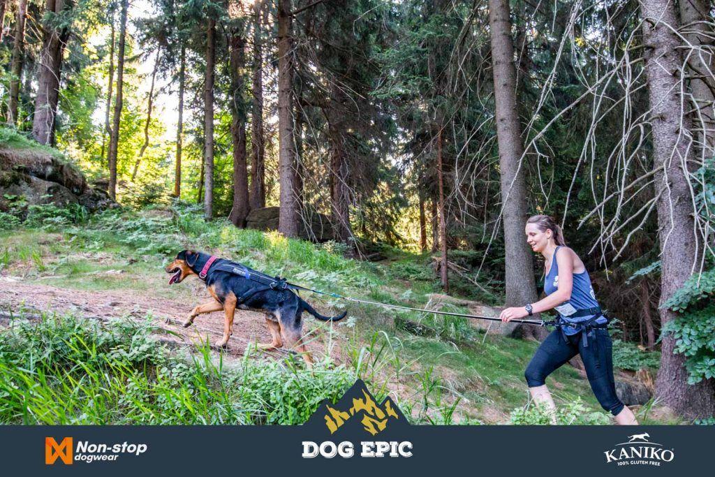 4030_dog_epic_0618