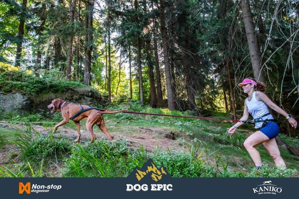 4040_dog_epic_0618