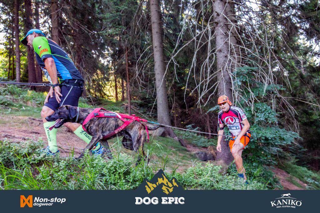 4060_dog_epic_0618