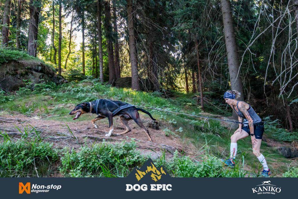 4063_dog_epic_0618