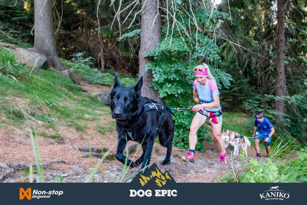 4073_dog_epic_0618