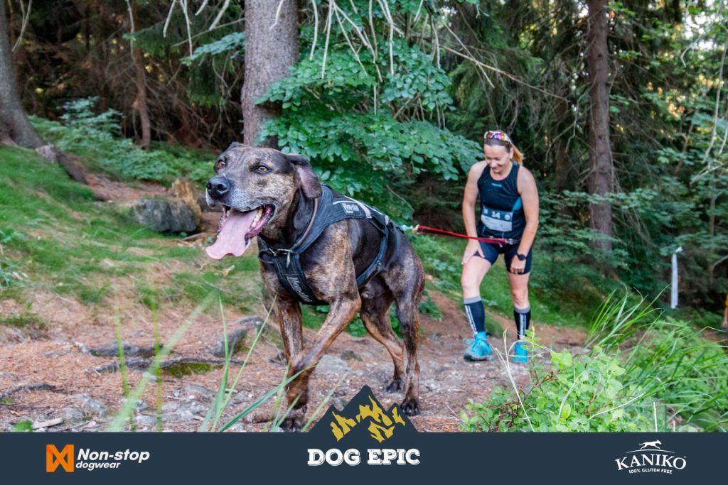4082_dog_epic_0618
