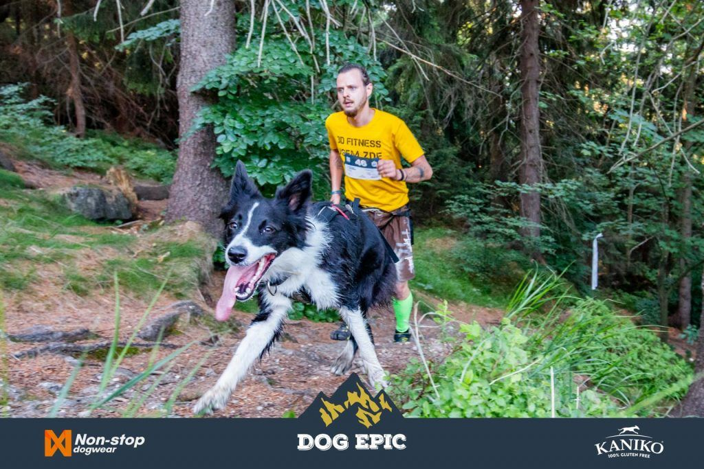 4086_dog_epic_0618