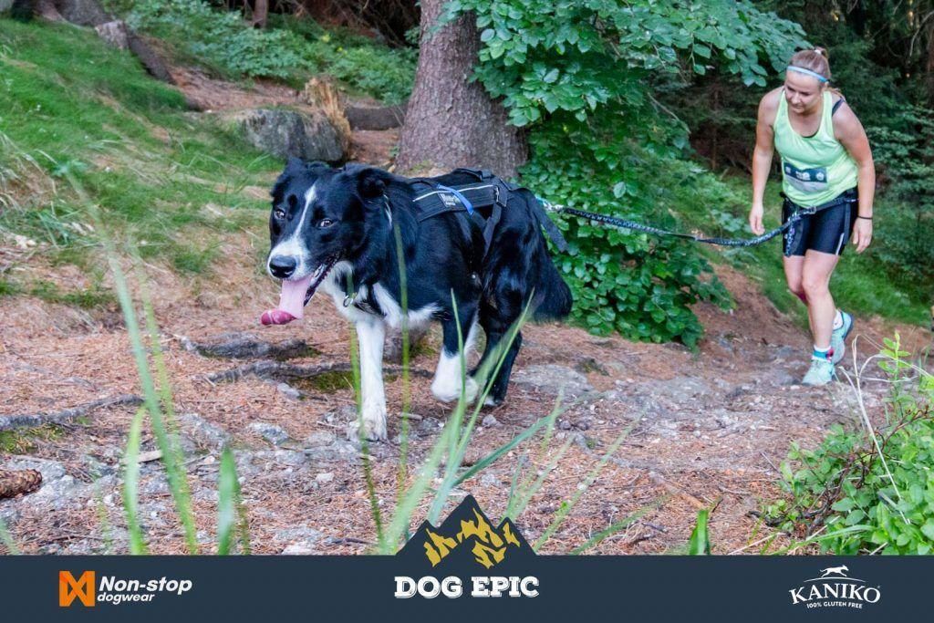 4093_dog_epic_0618