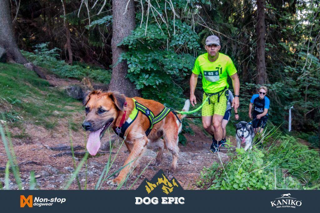 4100_dog_epic_0618