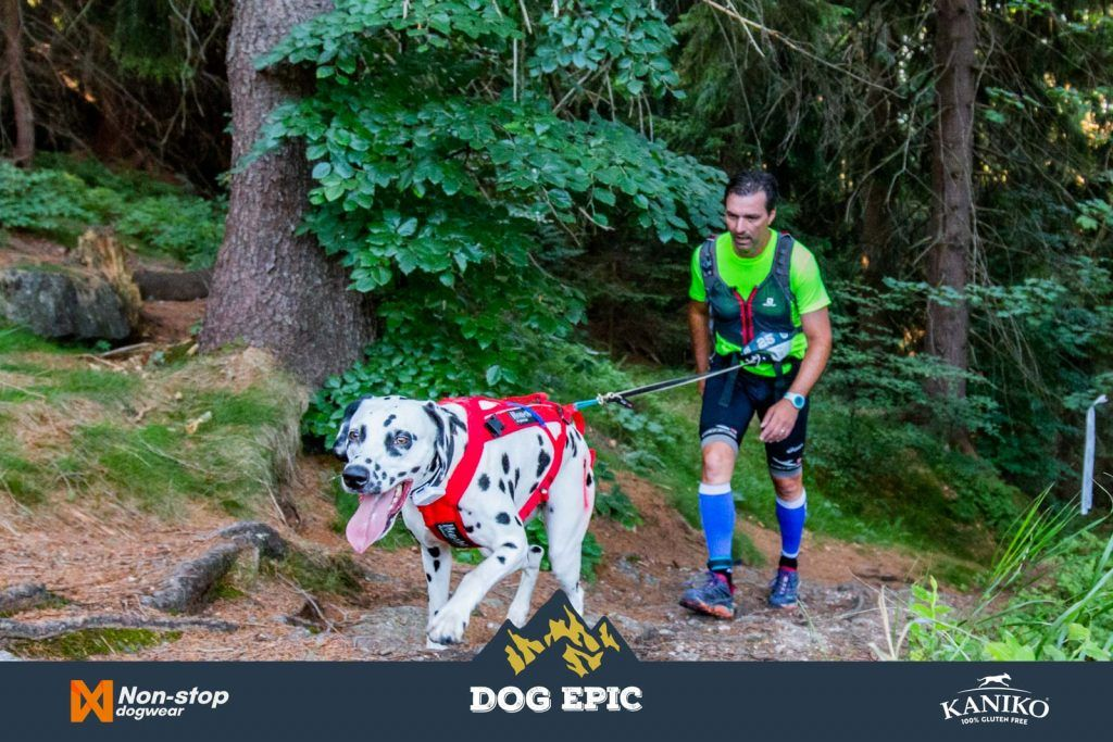 4132_dog_epic_0618