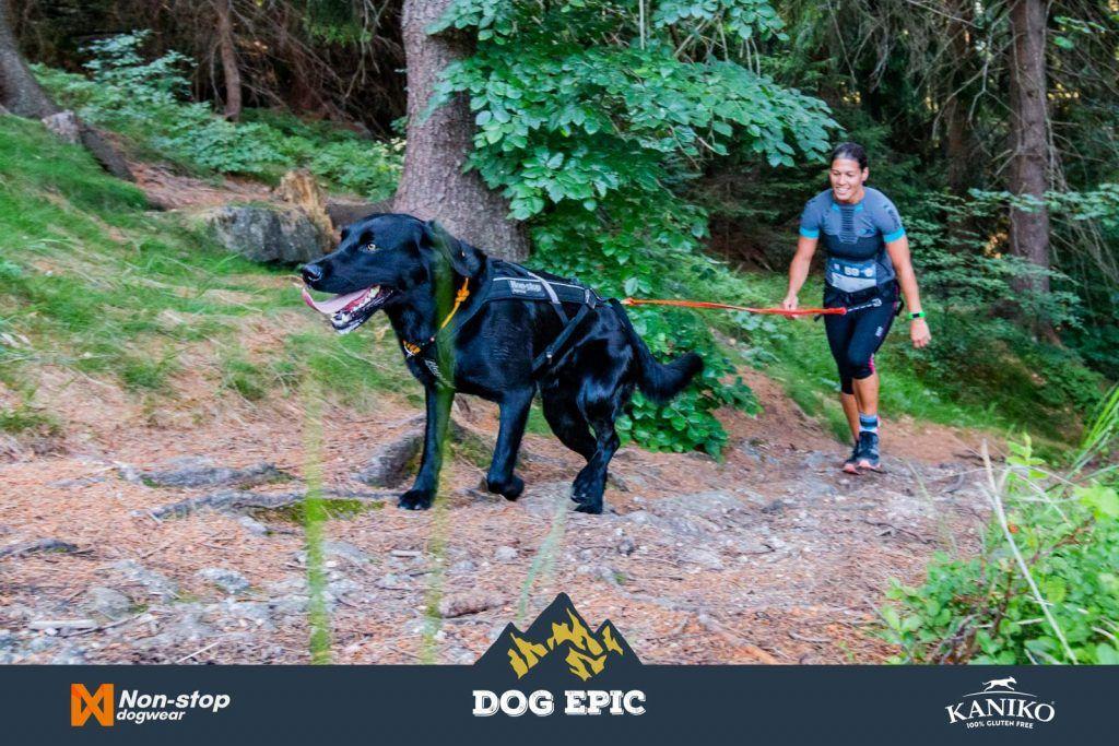 4150_dog_epic_0618