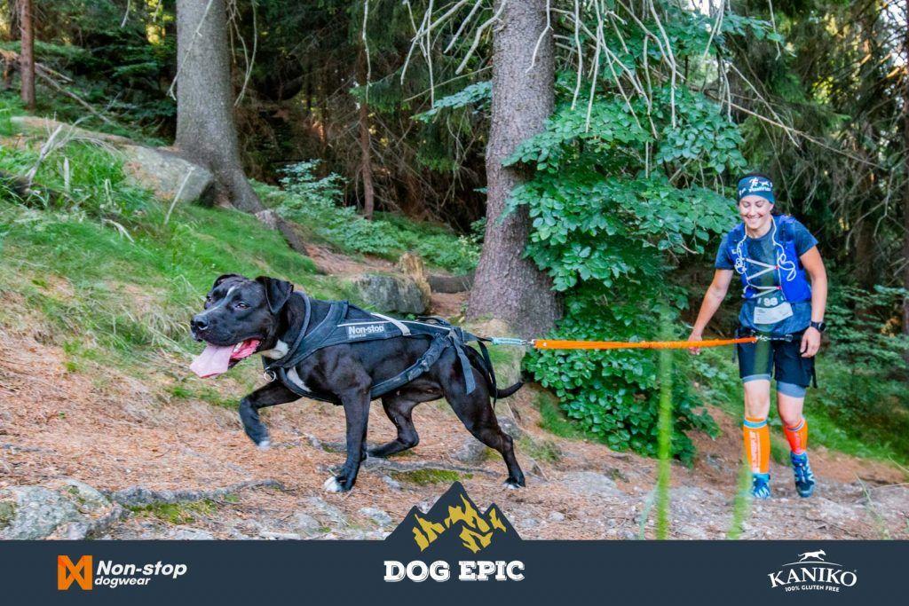 4160_dog_epic_0618