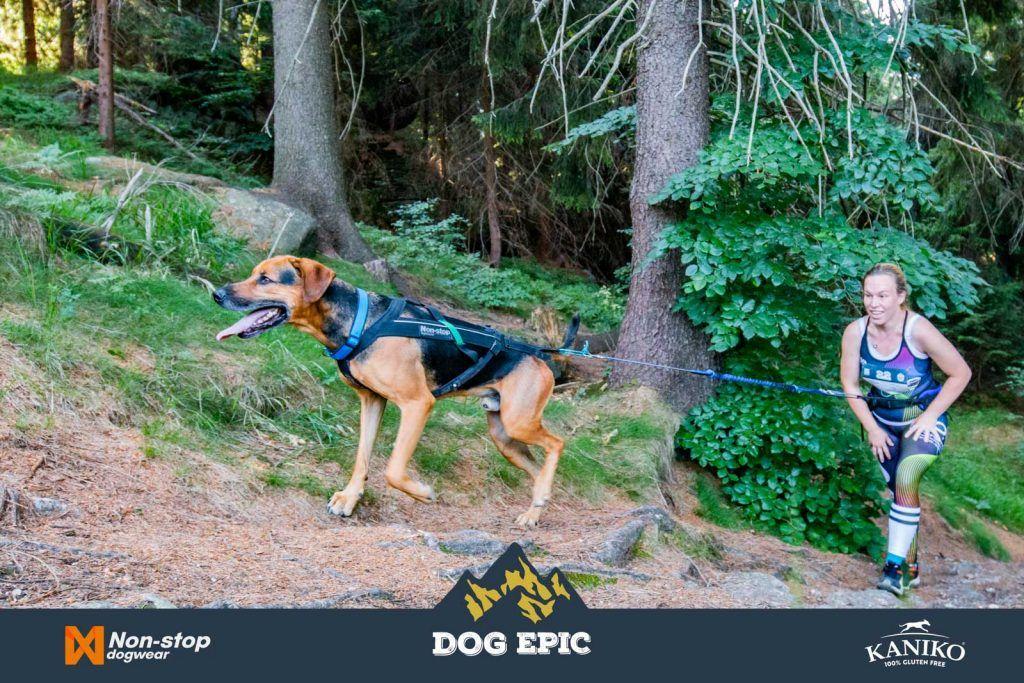 4164_dog_epic_0618