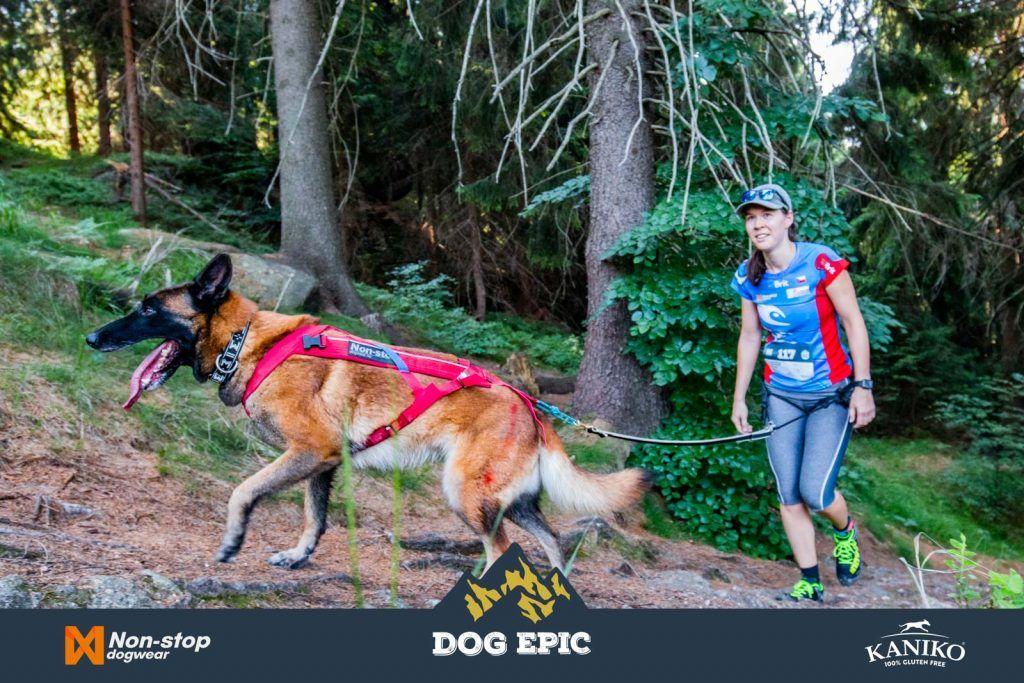4182_dog_epic_0618