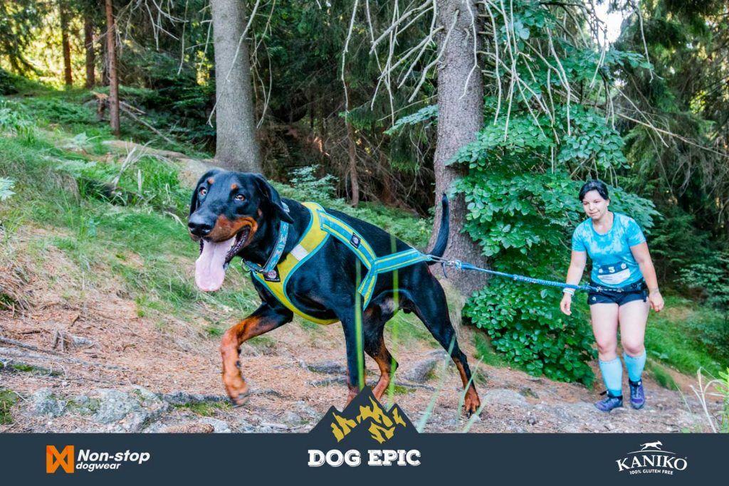 4189_dog_epic_0618
