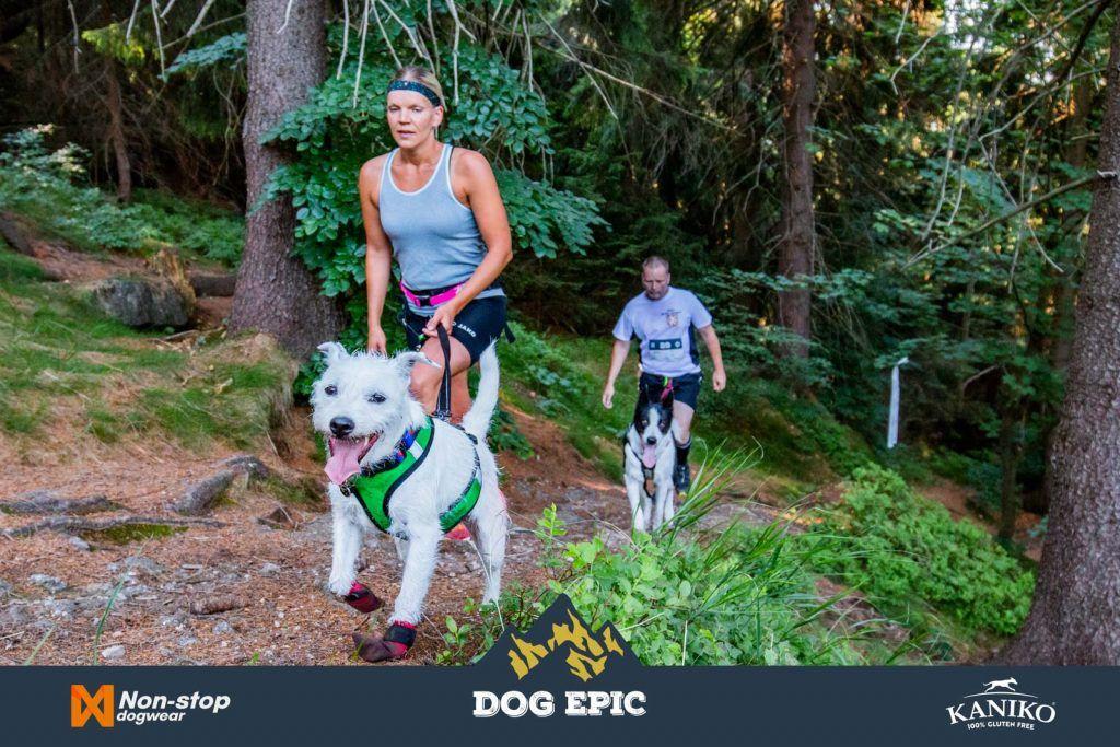 4209_dog_epic_0618