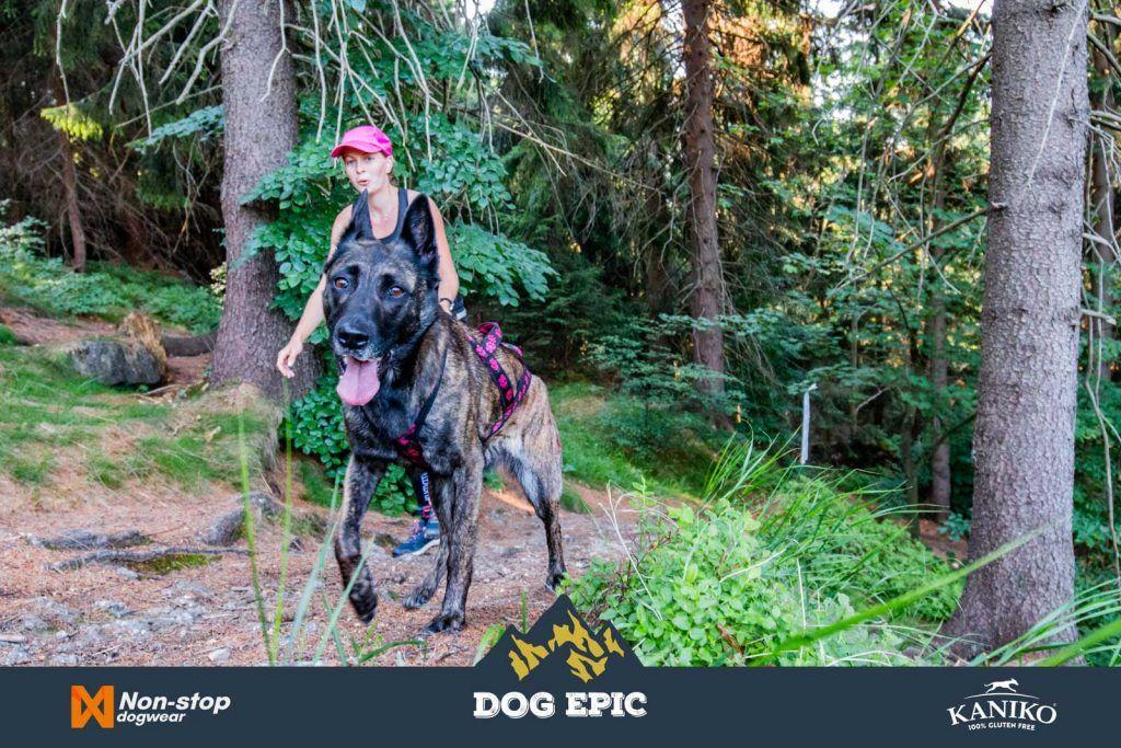 4225_dog_epic_0618